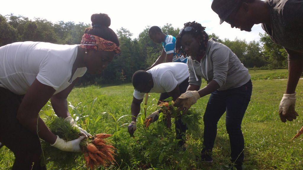 Volunteer – Hoosier Hills Food Bank